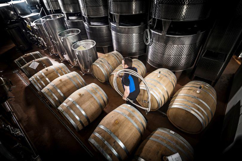 Weinkeller Weingut Hemer Holzfässer und Stahltanks
