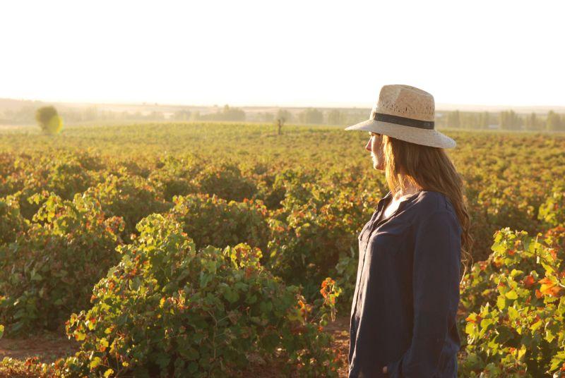 Blick über die Hochebene La Mancha mit Bioweinbergen