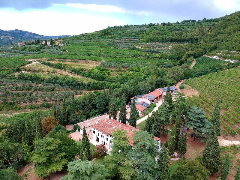 Weinberge Veneto