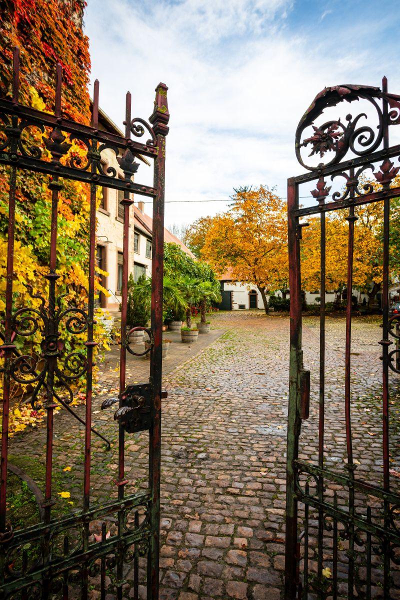 Eingangstor Weingut Janson-Bernhard